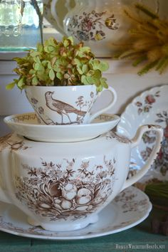 In the Potting Shed: Brown Transferware, Hydrangeas and Pumpkins Antique Dishes, Vintage Dishes, Vintage China, Vintage Love, Wedgewood China, Brown Bird, China Painting, China Patterns, Vintage Pottery