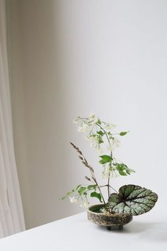 clematis - the Arrangement - minimal floral centerpiece with greenery - Ikebana Flower Arrangement, Ikebana Arrangements, Modern Flower Arrangements, Modern Wedding Flowers, Floral Wedding, Art Floral Japonais, Arreglos Ikebana, Sogetsu Ikebana, Japanese Flowers