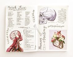 "studyguideverified: "" 46/100 days of productivity + SUN 10.2.16 // 2:43pm ""theme of the week: human anatomy. october sciences (¼);;;; this week was insANE and really really long but im so grateful that it's the weekend and really thankful for the..."