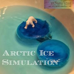 Investigating Polar Regions -- Arctic ice simulation
