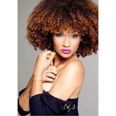 Curly Hair Braids, Curly Hair Styles, Kinky Hair, Twist Braid Hairstyles, Cool Hairstyles, Natural Hairstyles, Natural Hair Highlights, Natural Hair Transitioning, Divas