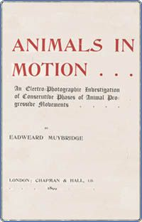 Muybridge, Animals in Motion, 1899