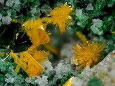 Kasolite, Pb(UO2)[SiO4]·H2O,  Musonoi Mine, Kolwezi, Kolwezi District, Katanga, Congo