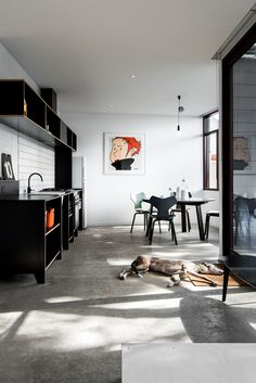 "designed-for-life: ""Designed by David Weir Architects, ""The Exploding! Shed House"" is a successful experiment in small footprint living for modern Perth. Built in the backyard of a sub-divided. Interior Design Institute, Altea, One Bed, Shed Homes, Luminaire Design, Asian Decor, Australian Homes, Wood Interiors, Living Furniture"