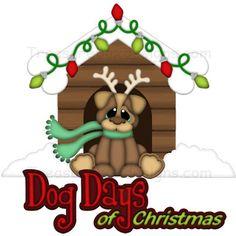Dog days of Christmas