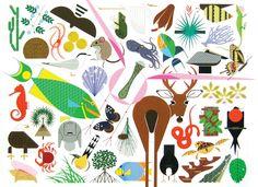 Charley Harper - Animal Kingdom
