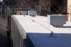 Custom Fall Protection Cable System