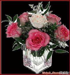 PicMix a Szebike [p. Beautiful Photos Of Nature, Beautiful Gif, Beautiful Roses, Glitter Roses, Pink Roses, Naming Day Cards, Flowers Gif, Gif Pictures, Arte Floral