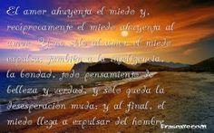 SAMANTABHADRI:  REIKI, HOPONOPONO, MEDITACIÓN Y MÁS....: AMOR Y FELICIDAD