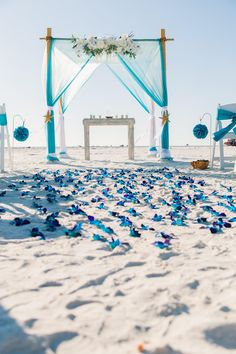 Turquoise beach wedding with blue bom orchid aisle.