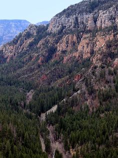 Oak Creek Canyon in Sedona, AZ. It is located just north of Sedona in the red rocks and is accessible by car. This would be cool to see on Spring break.