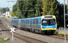 A 6 - car, fully refurbished, Comeng train heads up the grade, to Upfield, from Batman station Transport Pictures, V Lines, Commuter Train, Train Service, Corporate Identity Design, Train Tracks, Train Station, Public Transport, Buses