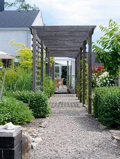 [ Trädgårdens tak ] Även trädgården behöver tak. Oavsett om det är parasoll, träd, pergola eller hela växthus gör de mycket för helheten / En längre passage med öppningar på sidorna som leder ut till olika delar av trädgården skapar dynamik i en platt trädgård. Liggande läkt hjälper växterna att klättra och skapa gröna väggar på höjden. En riktig tillgång blir passagen när vinrankan klättrat upp och gröna druvor hänger ner från taket, el när klätterrosen med sin klematiskompis växer genom…