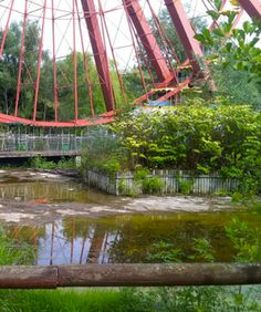 This Amazing Abandoned Amusement Park Might Become An Artist's Disneyworld