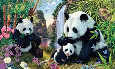 Can YOU spot the twelve hidden pandas in this family bear scene? #DailyMail