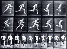 muybridge walk - Google Search