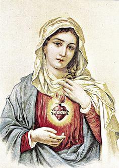 Sacro+Cuore+di+Maria+(3).jpg (1134×1600)