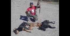 Prison pour le meurtrier de chiens qui ont publié des photos montrant son crime