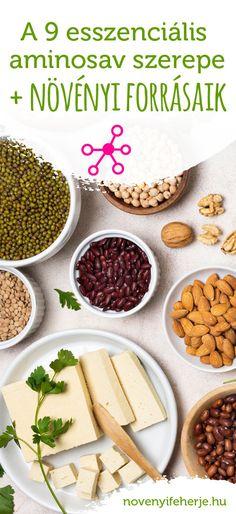Mik az esszenciális aminosavak, miért van szükség a pótlásukra? Cikkünkből kiderül ahogy az is, milyen növények jó aminosav-források. Nem csak sportolóknak! #novenyifeherje #veganprotein #vegan #protein #aminosav #feherje #esszencialisaminosavak #novenyietrend #növényiétrend #tapanyagok #tápanyagok #ezeketanövényeketedd Cereal, Protein, Breakfast, Healthy, Food, Morning Coffee, Meal, Essen, Hoods