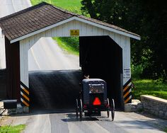 Stayed at a working dairy farm Bed & Breakfast in Lancaster County - amazing people and gorgeous countryside. Pennsylvania Dutch Country, Amish Country, Old Bridges, Amish Culture, Amish Community, Horse And Buggy, Lancaster County, Old Barns, Covered Bridges