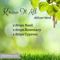 This know it all blend combines the memory enhancing properties of Basil, the energizing aroma of Cypress, and the concentration qualities of Rosemary. Diffuse this blend first thing in the morning to assist your family as they start their day or at work or home in the afternoon to assist with concentration during big work projects or homework.