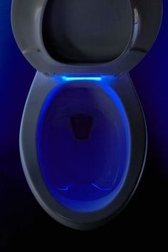 kohler Nightlight toilet seat 2 Best New Products from IBS  KBIS 2014