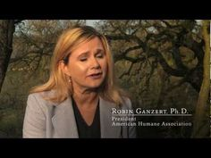 Foster Farms What It Means To Be American Humane® Certified