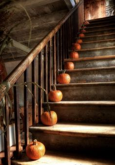 Image discovered by Ʈђἰʂ Iᵴɲ'ʈ ᙢᶓ. Find images and videos about autumn, Halloween and pumpkin on We Heart It - the app to get lost in what you love. Fete Halloween, Holidays Halloween, Happy Halloween, Spooky Halloween, Halloween Stuff, Halloween Clothes, Halloween Displays, Halloween Images, Funny Halloween
