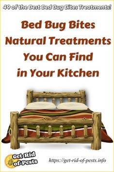 31 best how to treat bed bug bites images natural home remedies rh pinterest com