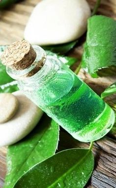 Tea tree oil is a 100% natural ingredient that can remove skin tags in 3 weeks. Getting rid of skin tags naturally  organically has never been easier.