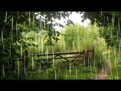 12 Hours - Relaxing Rainstorm With Thunder - Mix # 2 - Sleep Sounds / Ambient / Meditation / Lluvia - YouTube