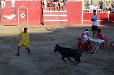 Santacara: Charlotada del Fútbol - Año 2017 (2) Football Team, Cows