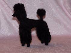 Poodle needle felted dog example custom made to order