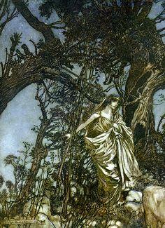 Arthur Rackham - A Midsummer Night's Dream (Never so weary, never so in woe) 1908 (24 of 30)