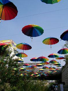 umbrellas - what a splendid sight!
