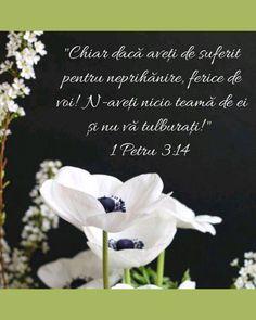 Jesus Loves You, God Loves Me, God Jesus, Gods Love, Bible Verses, Love You, Faith, Life, Frases