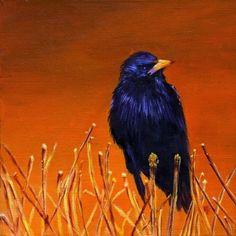 Black Bird Art Print Greeting Card Signed by Marina Petro