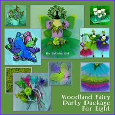 PARTY in a BOX  Fairy Party  Birthday Party by FairyNanaLand, $187.00