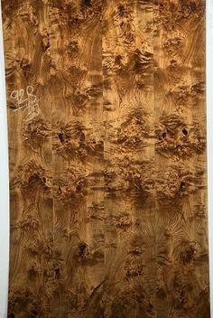Veneer Texture, Wood Texture, Walnut Burl, Hardwood Floors, Flooring, Wood Carving Patterns, Sun Designs, Paint Effects, Building Materials