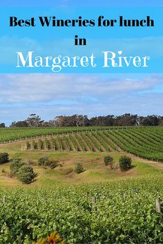 The best wineries in Margaret River are also home to some of the best Margaret River restaurants. Here is our pick of the best Margaret River wineries for lunch. Margaret River Western Australia, River Restaurant, Margaret River Wineries, Wine Tasting Events, Napa Valley Wine, Down South, Australia Travel, Wine Country, Family Travel