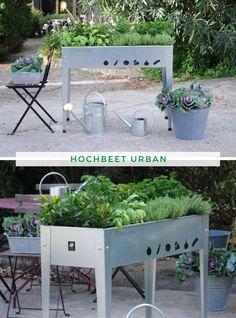 Hochbeet Stahl: Das Hochbeet Urban verbindet modernes Design mit rückenschonendem Gärtnern in angenehmer Stehhöhe. Bei der bunten Auswahl verschiedenster Farben findet jeder das Passende für seinen Geschmack. Das Hochbeet ist rostfrei, witterungs- und frostbeständig für den ganzjährigen Gebrauch zur Aufzucht von Gemüse und Kräutern oder einfach als dekorativer Pflanzkasten geeignet. Jetzt kaufen!  #Hochbeet #Kräuterbeet #Gemüsebeet #Gärtnern #Urban Kraut, Urban, Plants, Diy, Home And Garden, Contemporary Design, Dekoration, Welcome, Steel