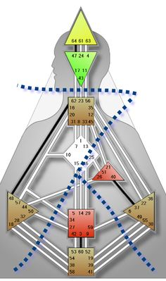 Quadruple Split Definition | HumanDesign.com - Human Design System  http://www.humandesign.com/quadruple-split-definition