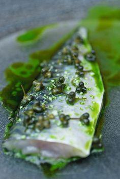 MIELCKE & HURTIGKARL green fish