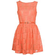 Orange Daisy Lace Dress @Briana Raposo I don't know if this is the orange you were thinking of but it's cute