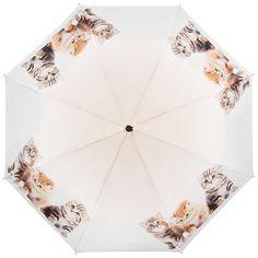 """VON LILIENFELD Mini-parapluie à motif """"Trio de chats"""": Amazon.fr: Bagages"""