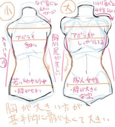 Illustration course for drawing a chest! How to draw a breast with the ribs and … Illustration course for drawing a chest! How to draw a breast with the ribs and hips in your eye? Drawing Body Poses, Body Reference Drawing, Anatomy Reference, Art Reference Poses, Drawing Female Body, Hair Reference, Body Drawing Tutorial, Manga Drawing Tutorials, Drawing Tips