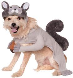 580082-Squirrel-Dog-Costume-large.jpg (1029×1100)