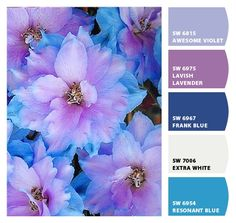 Paint colors from Chip It! by Sherwin-Williams Color Schemes Colour Palettes, Colour Pallete, Color Combos, Beautiful Color Combinations, Color Balance, Design Seeds, Colour Board, Yarn Colors, Color Theory