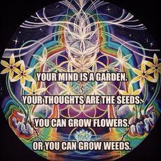 Your mind is a garden.. - Twitter@WiliManJaro ThirdEyeTribe