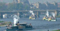 Focus.de - Schifffahrt: Tausende beobachten traditionelle Mai-Dampferparade auf der Elbe - Dresden
